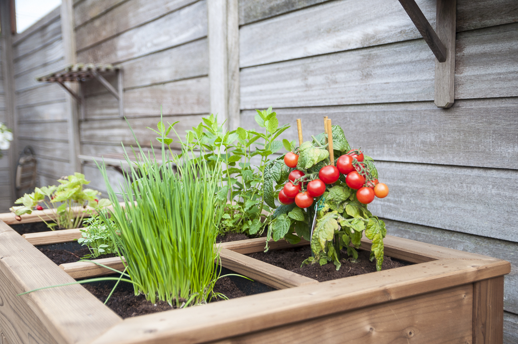 kruidentafel tuinkastenshop